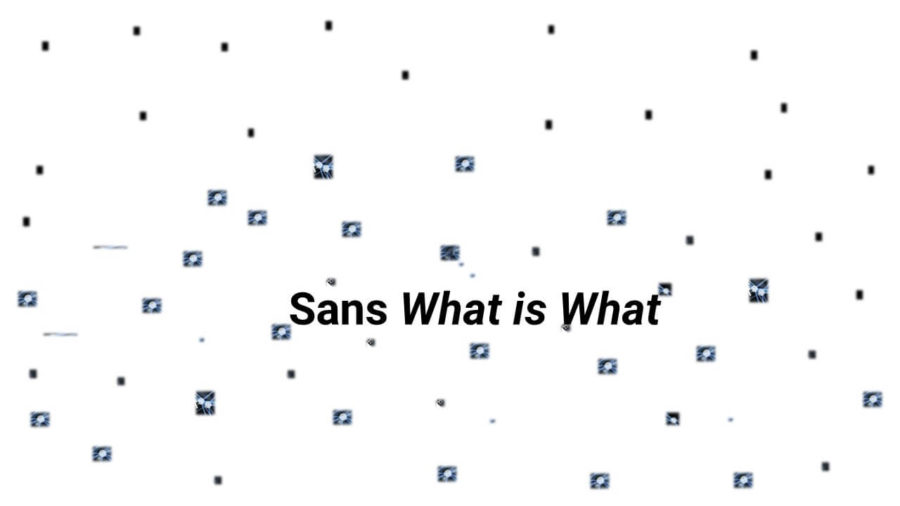 Sans-What-is-What-e1587822460387 - The WIW - Solutions 4.0